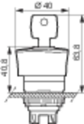 BACO L22GR01 Noodstop schakelaar Kunststof frontring, Zwart Rood Sleutel-ontgrendeling 1 stuks
