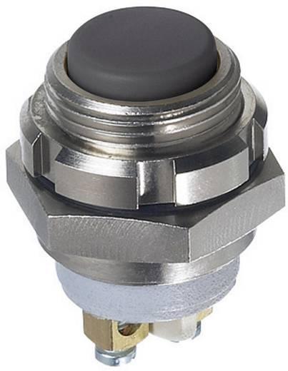 APEM IZMR3S42N Druktoets 250 V/AC, 48 V/DC 0.2 A 1x uit/(aan) IP67 schakelend 1 stuks