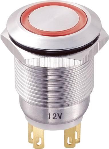 TRU COMPONENTS LAS1-GQ-11E/R/12V Vandalismebestendige druktoets 250 V/AC 5 A 1x uit/(aan) IP65 schakelend 1 stuks