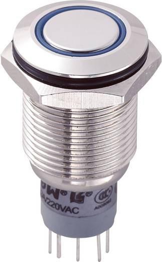 TRU Components LAS2GQF-22ZE/B/12V/N/P Vandalismebestendige drukschakelaar 250 V/AC 3 A 2x aan/aan IP67 vergrendelend 1 s