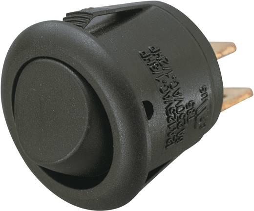 SCI R13-270A Wipschakelaar 250 V/AC 6 A 1x uit/aan vergrendelend 1 stuks