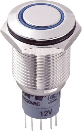 TRU COMPONENTS LAS2GQF-22E/B/12V/N/P Vandalismebestendige druktoets 250 V/AC 3 A 2x aan/(aan) schakelend 1 stuks