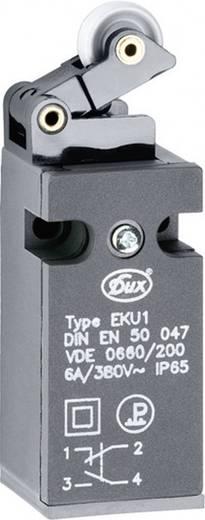 Schlegel EKU1-KH Eindschakelaar 380 V/AC 6 A Rolhefboom schakelend IP65 1 stuks