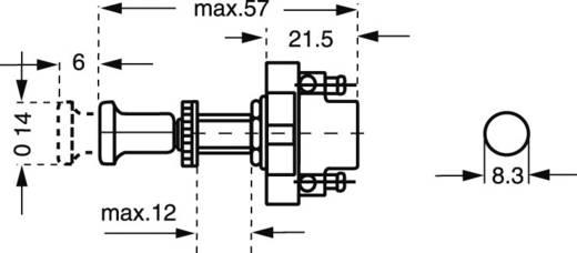 Hella ZUGSCHALTER Auto trekschakelaar 12 V/DC 10 A 1x uit/aan vergrendelend 1 stuks
