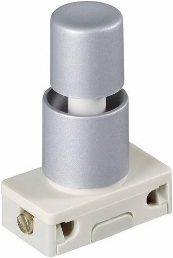 interBär 3030-611.81 Drukschakelaar 250 V/AC 2 A 1x aan/uit vergrendelend 1 stuks