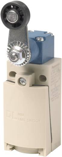 Panasonic AZD1054CEJ Eindschakelaar 220 V/DC, 380 V/AC 6 A Rolhefboom schakelend IP67 1 stuks