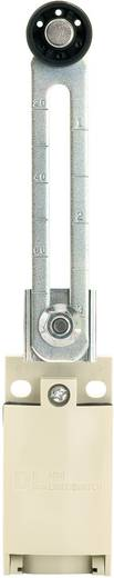 Panasonic AZD1058CEJ Eindschakelaar 220 V/DC, 380 V/AC 6 A Rolhefboom schakelend IP67 1 stuks