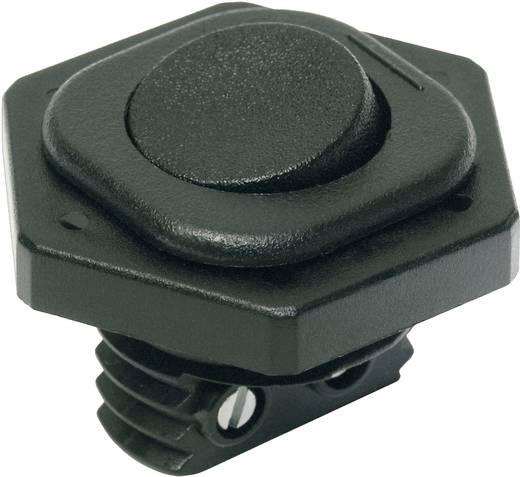 interBär 8014-004.01 Wipschakelaar 250 V/AC 6 A 1x uit/aan vergrendelend 1 stuks