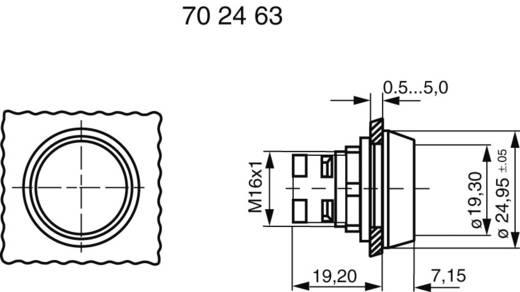 RAFI 130070021/1002 Druktoets Bedieningsknop vlak Transparant 1 stuks