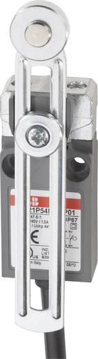 ABB LS21P54B11-P01 Eindschakelaar 400 V/AC 5 A Zwenkbare rolhefboom schakelend IP67 1 stuks