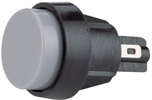 Marquardt 5000.0104 Druktoets 250 V/AC 4 A 1x uit/(aan) IP40 schakelend 1 stuks