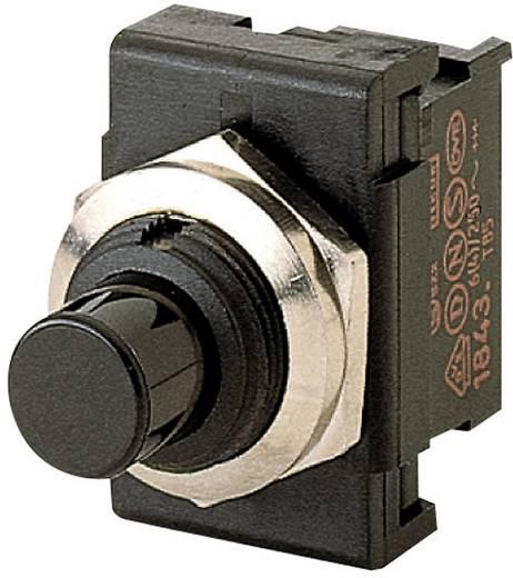 Marquardt 1843.1201 Druktoets 250 V/AC 6 A 1x aan/(aan) IP40 schakelend 1 stuks