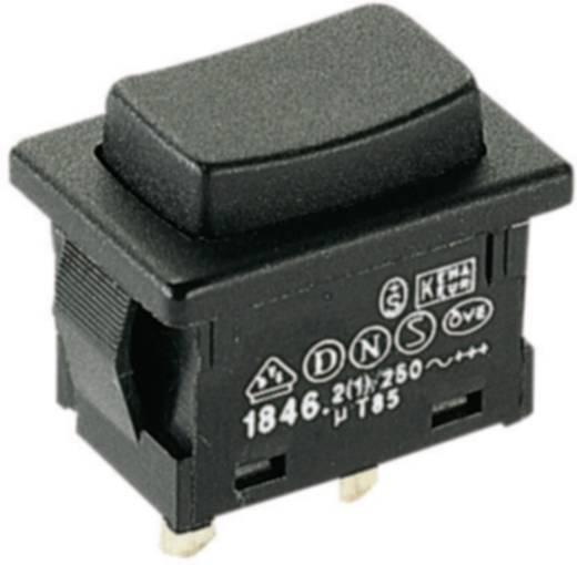 Marquardt 1846.0201 Druktoets 250 V/AC 2 A 1x uit/(aan) IP40 schakelend 1 stuks