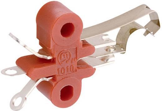 Marquardt 1010.0101 Microschakelaar 250 V/AC 2 A 1x aan/(aan) schakelend 1 stuks