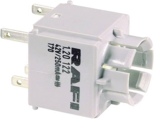 Contact element 1x NC, 1x NO schakelend 250 V RAFI 1.20123.021 1 stuks