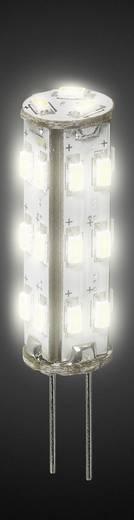 DioDor LED G4 1.3 W = 20 W Warmwit (Ø x l) 9.8 mm x 35 mm Energielabel: A+ Dimbaar 1 stuks
