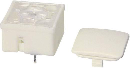 RAFI 3.14100.001 Druktoets 42 V DC/AC 0.1 A 1x uit/(aan) schakelend 1 stuks
