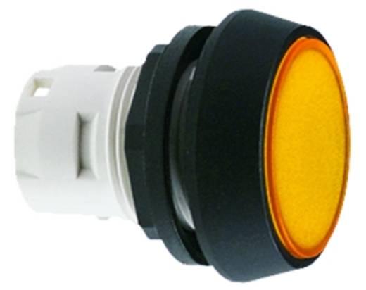RAFI 1.65.124.421/0000 Signaallamp Zwart 5 stuks