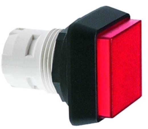 RAFI RAFIX 16 1.30.070.551/0000 Druktoets Rand vooruitstekend Kleurloos, Transparant 10 stuks