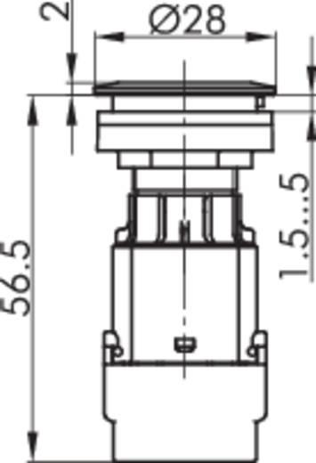 Contact element Met fitting 1x NC, 1x NO schakelend 250 V Schlegel BTL5K 1 stuks