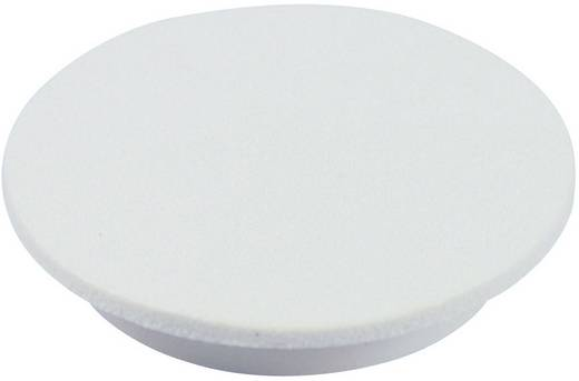 Cliff CL177752 Afdekkap Wit Geschikt voor Draaischakelaars K12 1 stuks