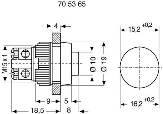 RAFI 110001001.0205 Druktoets 250 V/AC 0.7 A 1x uit/(aan) schakelend 1 stuks