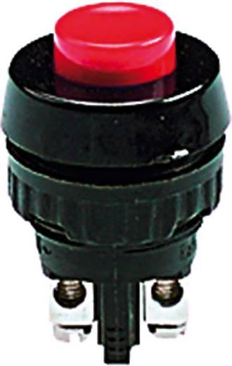 RAFI 110001001.0301 Druktoets 250 V/AC 0.7 A 1x uit/(aan) schakelend 1 stuks
