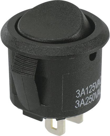 SCI R13-297A-05 Wipschakelaar 250 V/AC 3 A 1x uit/aan vergrendelend 1 stuks