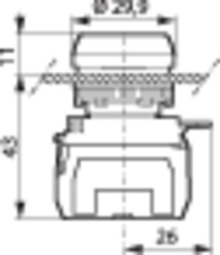 BACO L21AH10L Druktoets Kunststof frontring, Verchroomd Rood 1 stuks