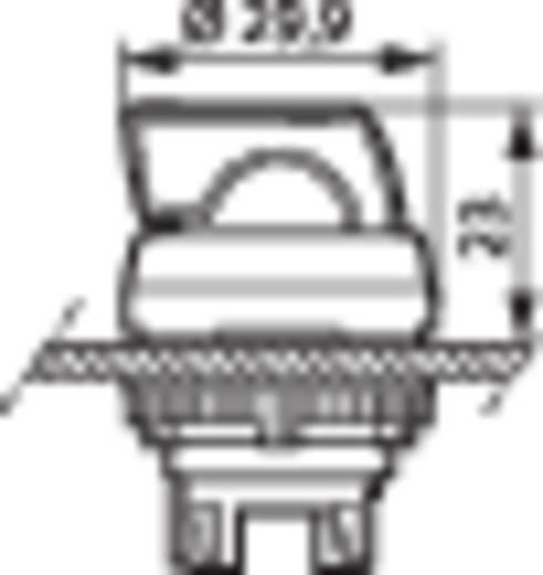 BACO L21KG10 Keuzetoets Kunststof frontring, Verchroomd Rood 1 x 45 ° 1 stuks