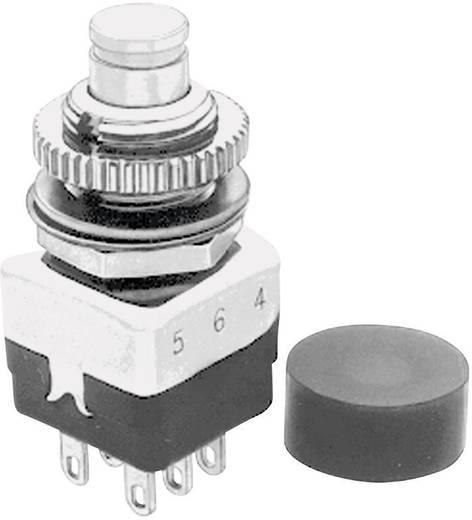 APEM 10445A Druktoets 220 V/AC 2 A 2x aan/(uit) schakelend 1 stuks