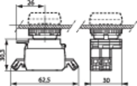 Contact element, LED-element Met bevestigingsadapter 1x NO Groen schakelend 230 V BACO BA333EAGH10 1 stuks