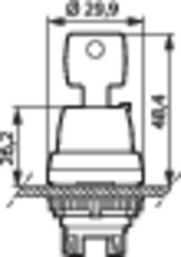 BACO L21NL00 Sleutelschakelaar Kunststof frontring, Verchroomd Zwart, Chroom 2 x 45 ° 1 stuks