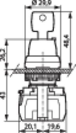 BACO L21LA00G Sleutelschakelaar Kunststof frontring, Verchroomd 1 x 45 ° 1 stuks