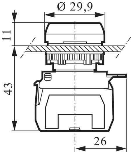 BACO L21AA81D Druktoets Metalen frontring, Verchroomd Rood 1 stuks