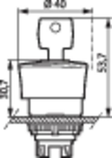 BACO L22GM01 Noodstop schakelaar Kunststof frontring, Zwart Rood Sleutel-ontgrendeling 1 stuks