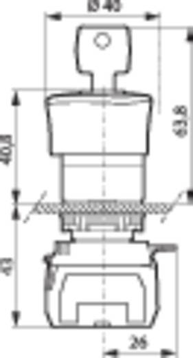 BACO L22GR01B Noodstop schakelaar Kunststof frontring, Zwart, Met statusweergave Rood Sleutel-ontgrendeling 1 stuks