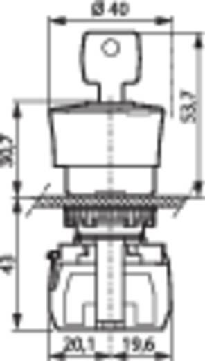 BACO L22GM01E Noodstop schakelaar Kunststof frontring, Zwart Rood Sleutel-ontgrendeling 1 stuks