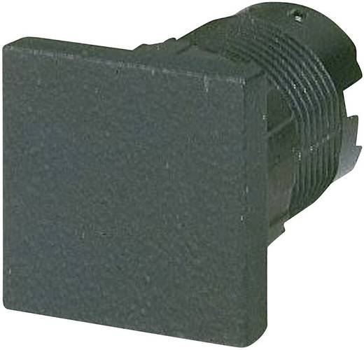 Eaton Q25BS Blinde afsluiting (l x b) 25 mm x 25 mm Zwart 1 stuks