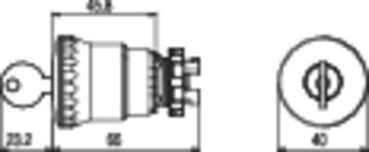 Pizzato Elettrica E21PEBZ4531 Noodstop schakelaar Geel, Rood Sleutel-ontgrendeling 1 stuks