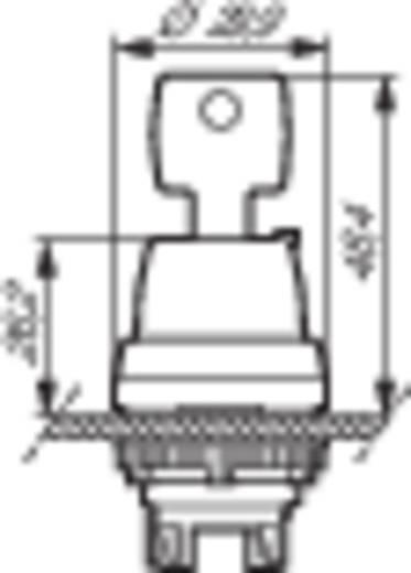 BACO L21LD00 Sleutelschakelaar Kunststof frontring, Verchroomd Zwart, Chroom 1 x 45 ° 1 stuks