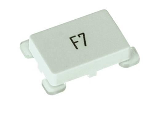 RAFI 5.55.103.032/1013 Toetskap Verlicht (l x b) 17.2 mm x 24.2 mm Transparant 20 stuks