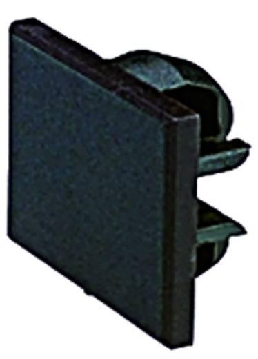 Industrieverpakkingseenheid accessoires voor serie LUMOTAST 75 Zwart RAFI Inhoud: 10 stuks