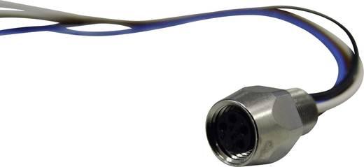 Conec SAL-8-FK4-0,2 M8 sensor-/actor-inbouwconnector Aantal polen: 4 Inhoud: 1 stuks
