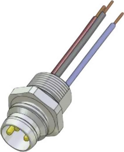 Conec SAL-8-FS4-0,2 M8 sensor-/actor-inbouwconnector Aantal polen: 4 Inhoud: 1 stuks