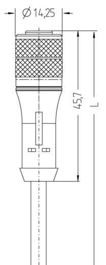 """Escha BL-WAK4.5-5/P00 M12 sensor-/actorkabel """"Base Line"""" Aantal polen: 5 Inhoud: 1 stuks"""