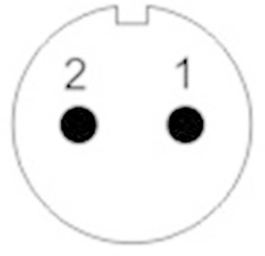 Push-pull coaxiaalsteker IP67 Aantal polen: 2 Kabelsteker 13 A SF1212/S2 Weipu 1 stuks