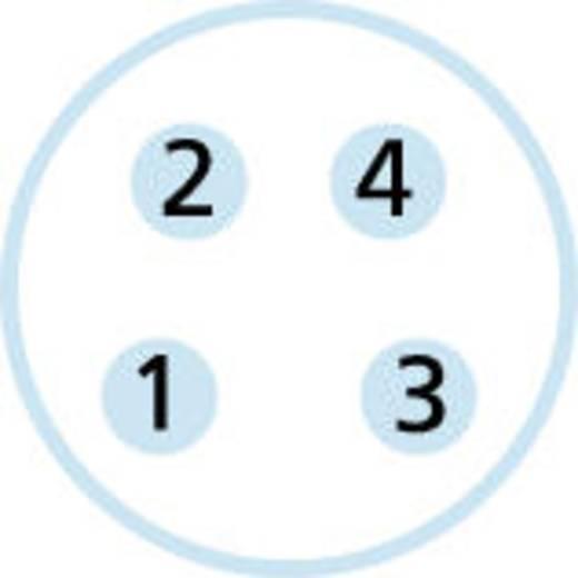 """Escha AL-SKPS4-2-AL-SSPS4/S370 M8-sensor-/actorkabel """"AUTOMATION LINE"""" verbindingskabel, afgeschermd Aantal polen: 4 Inh"""