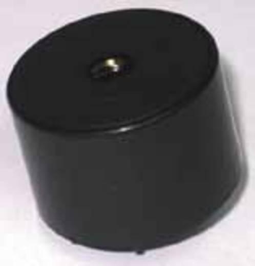 Piëzo-signaal Geluidsontwikkeling: 100 dB Spanning: 9 V Continu 716804 1 stuks
