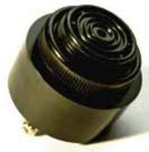 Piëzo-signaal Geluidsontwikkeling: 95 dB Spanning: 9 V Continu 716830 1 stuks